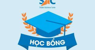 hoc bong